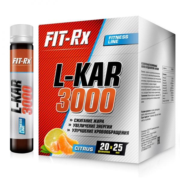 L-KAR 3000